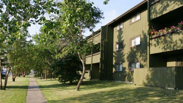 Cedars-Exterior